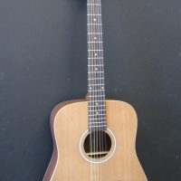 Teton 12 string dreadnought