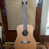 Solid-Top 12-String Guitar by Teton